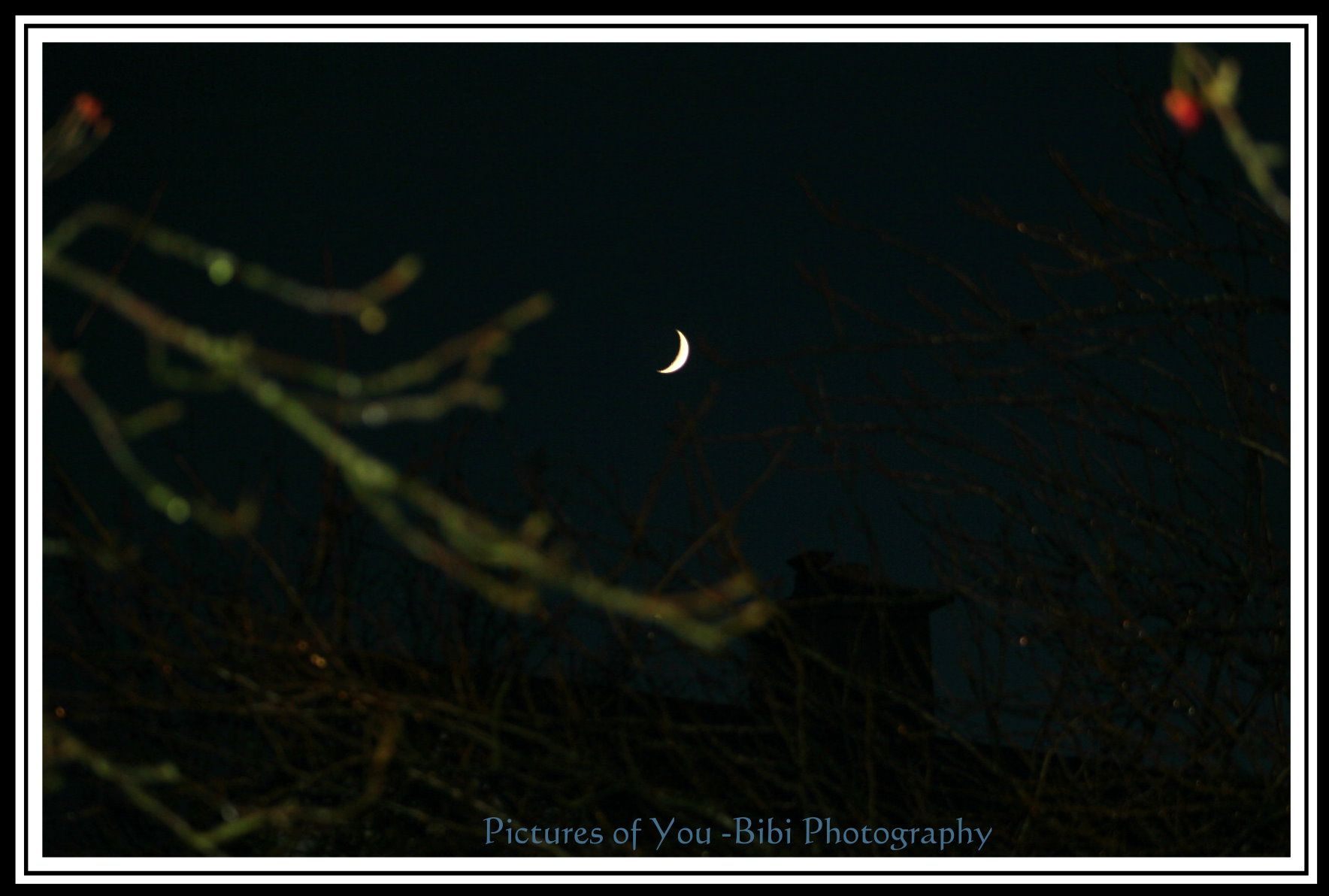 I stole thee Moon <3