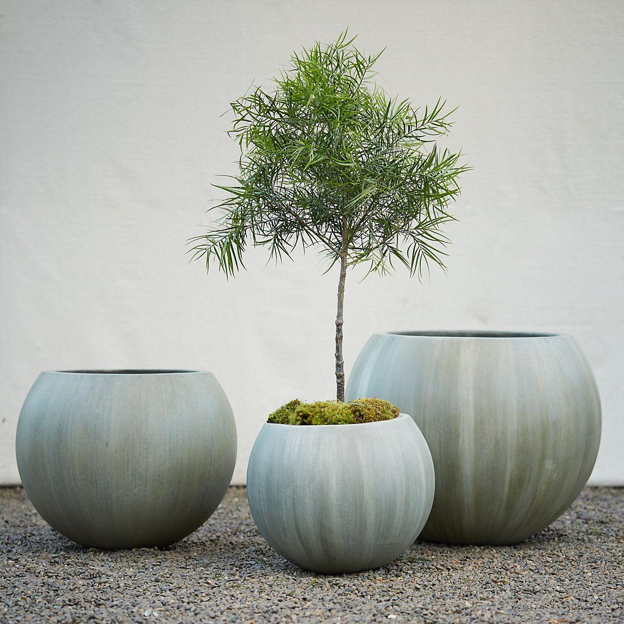 mossy fiber globe planter