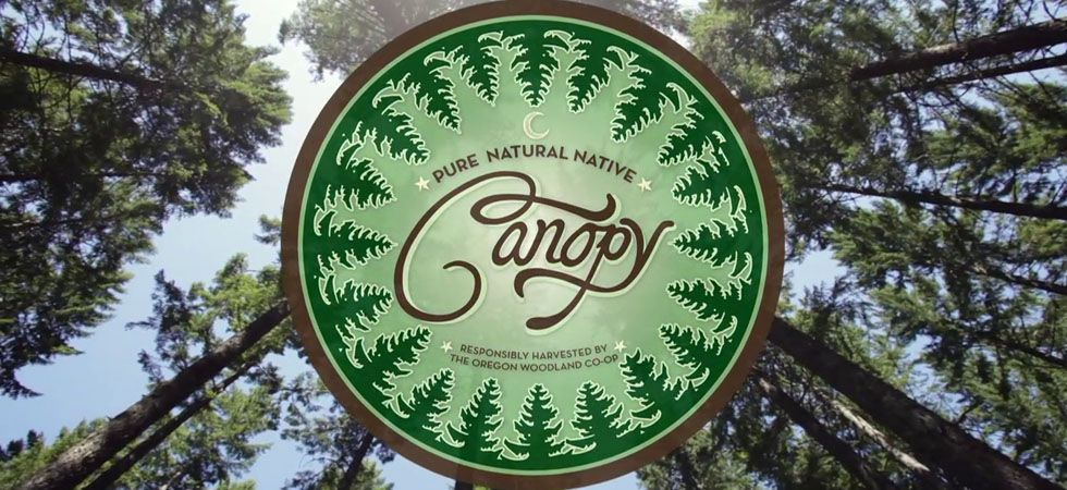Essential tree oils harvested by Oregon small family