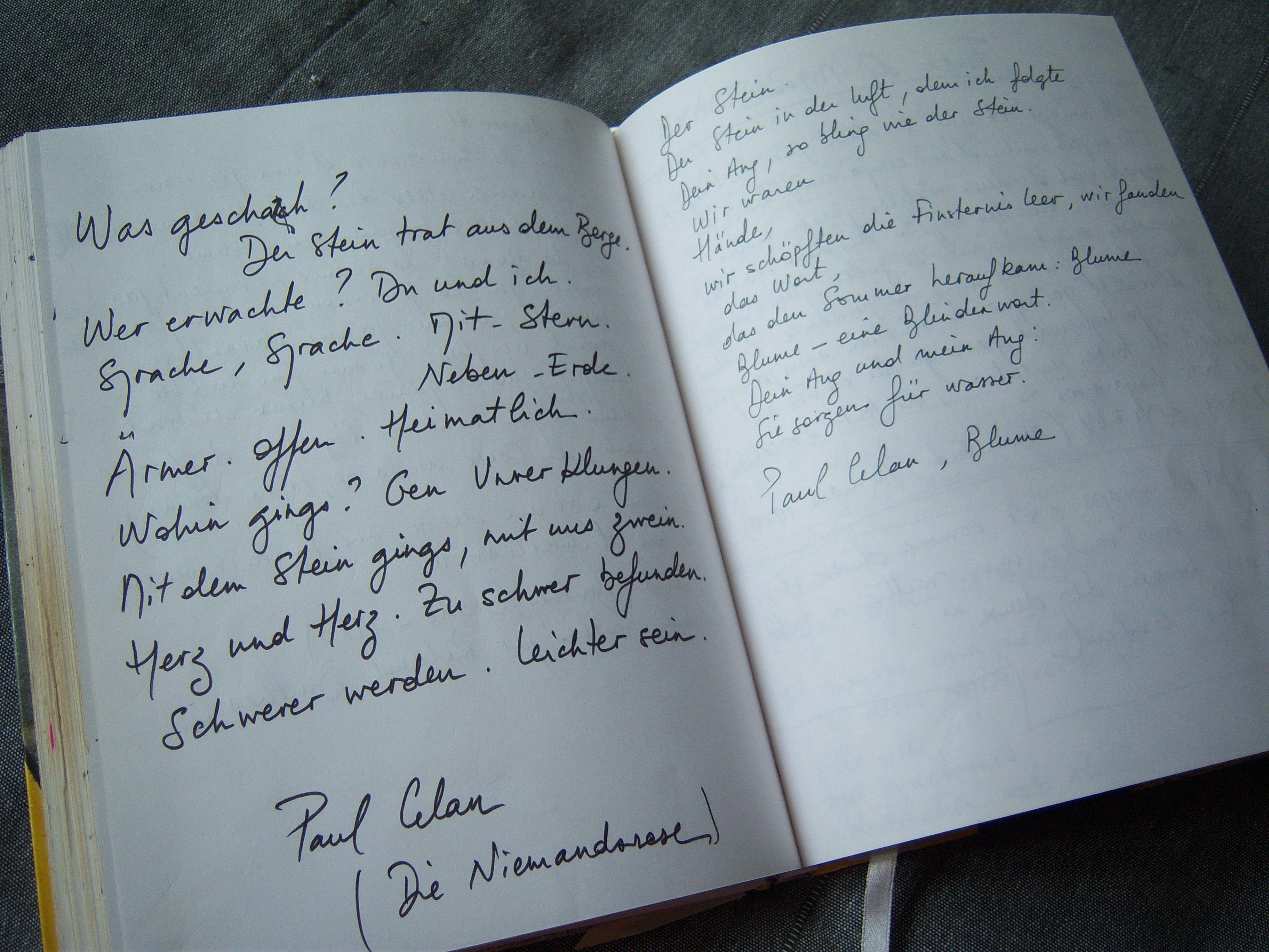 Paul Celan Gedichte Die Niemandsrose And Blume K D Poetique