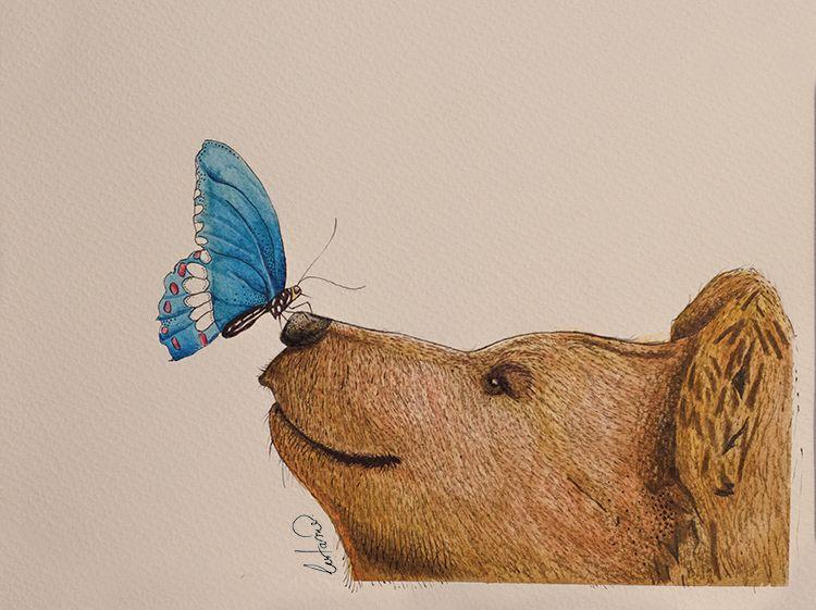 butterfly bear - Google Search