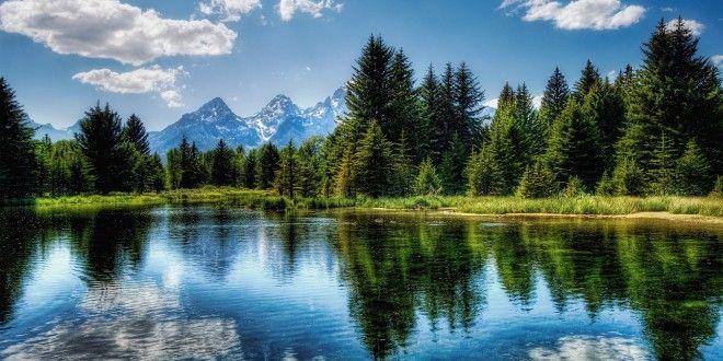 EwallpapersHub provides HD Wallpapers Nature Free Download