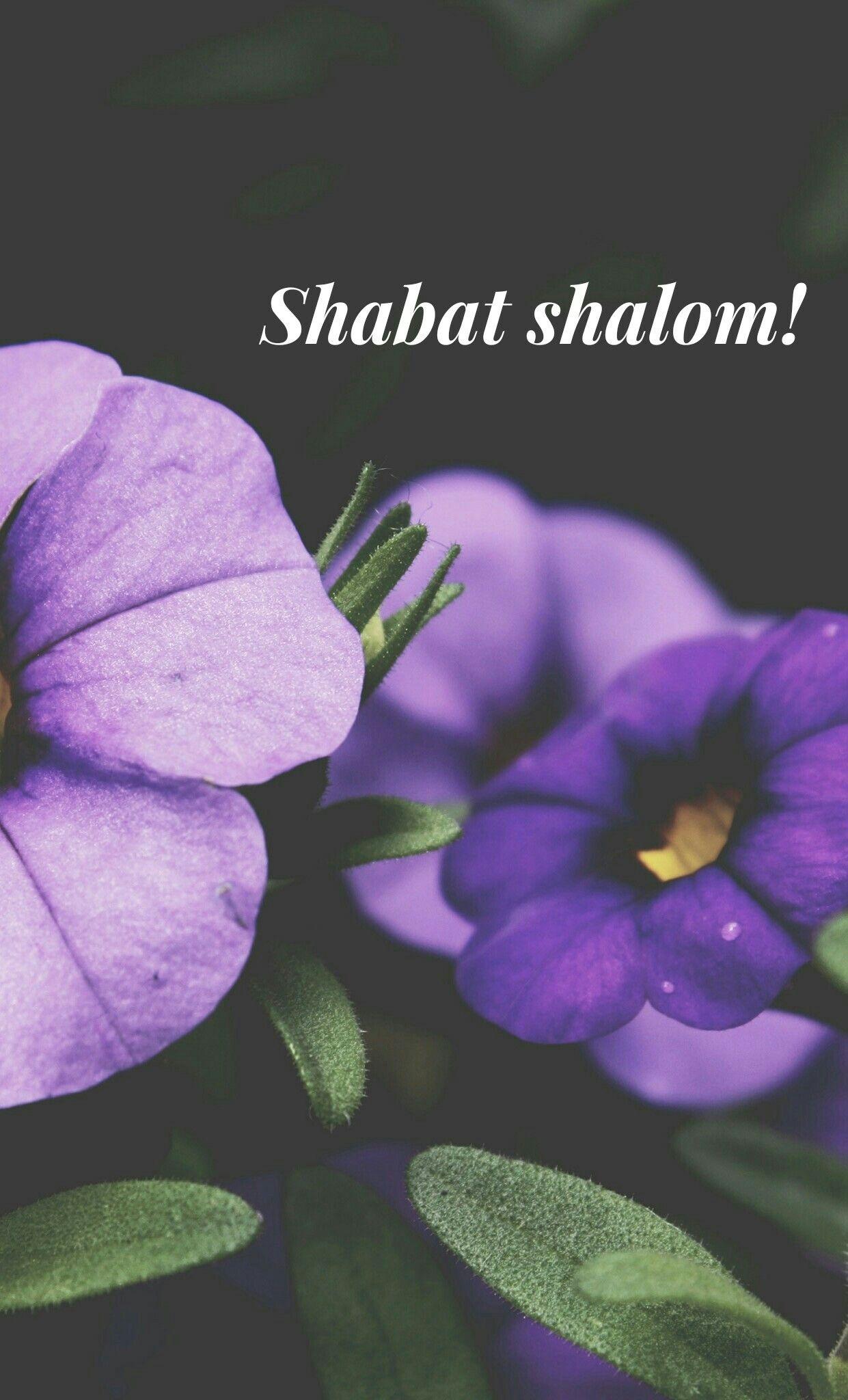 #ShabatShalom #wallpaper #background #torah #fondo para celular -by Cass-