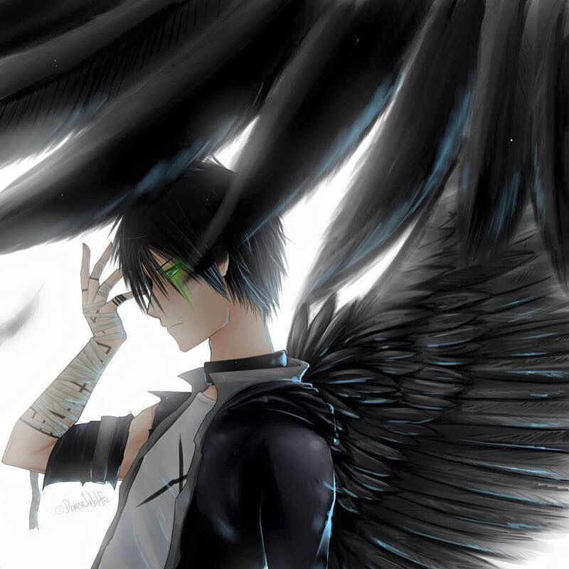 Anime Angel, Anime Demon