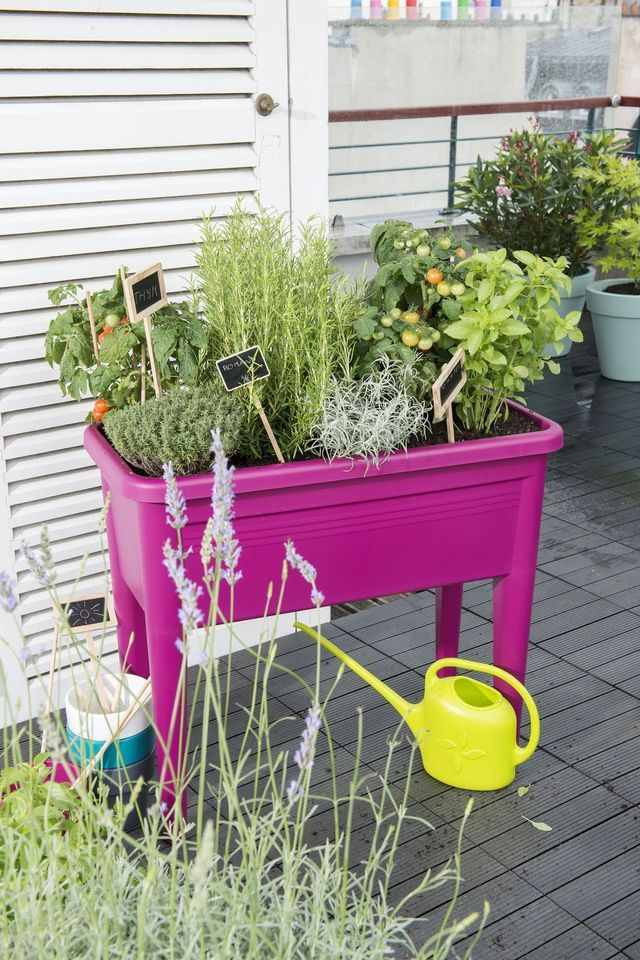 Jardin urbain contemporain : ustensile jardinage, mini ...
