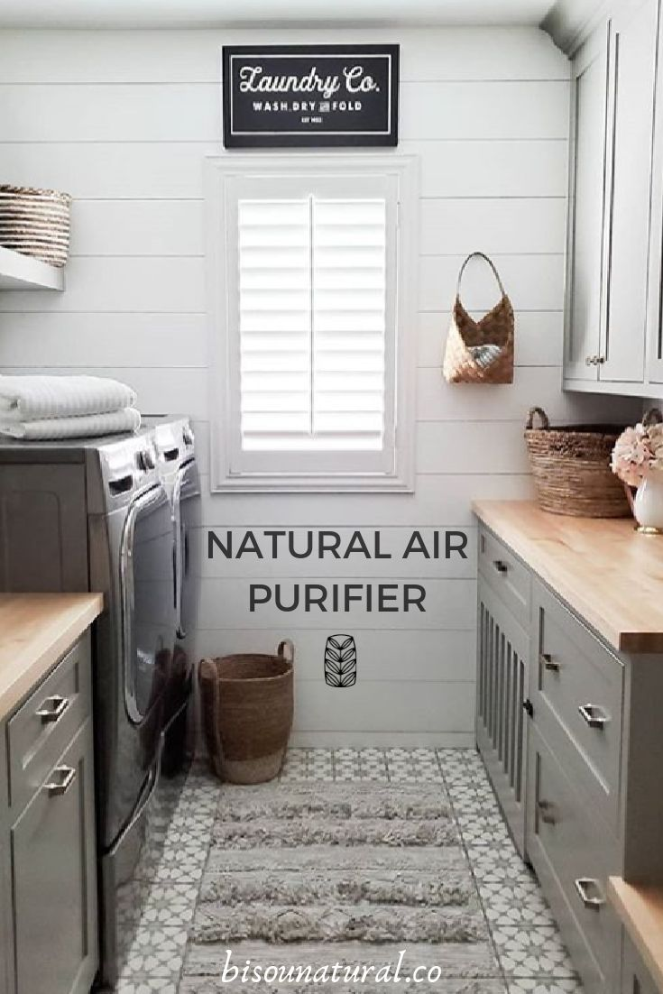 Keep your laundry room smelling fresh and free of moisture