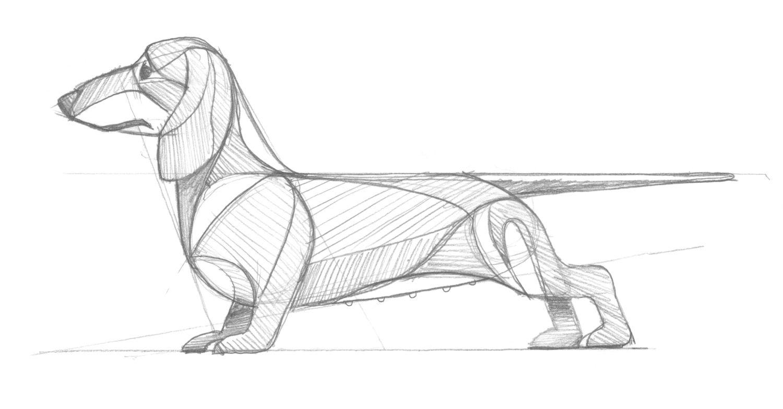 Golden Doodle Goods Dog Breed Illustrations