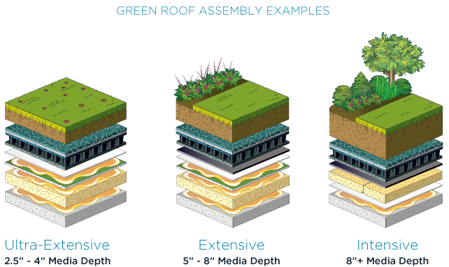 Vegetative Green Roofs Green Roof Green Roof Residential Roofing