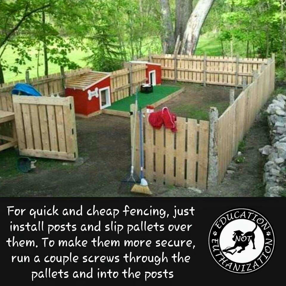About Us Diy Crafts Dog Fence Pallet Fence Dog Yard