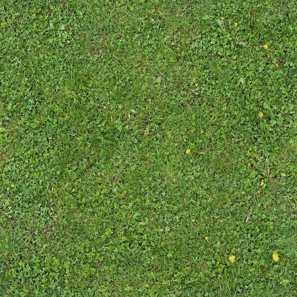 Seamless Green Grass Texture 01 By Goodtextures On DeviantART