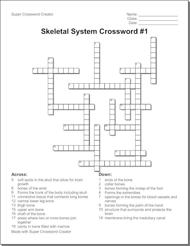 skeletal-system-crossword-puzzle-humananatomy-online | Science ...