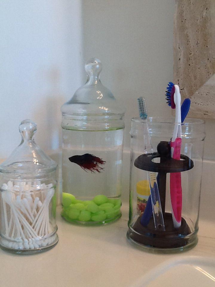 Cat Proof Fish Tank For My Babies Fish Tank Cats Fish