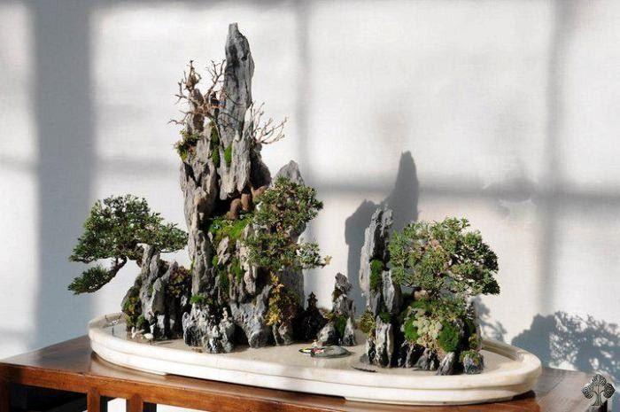 Penjing rock landscape