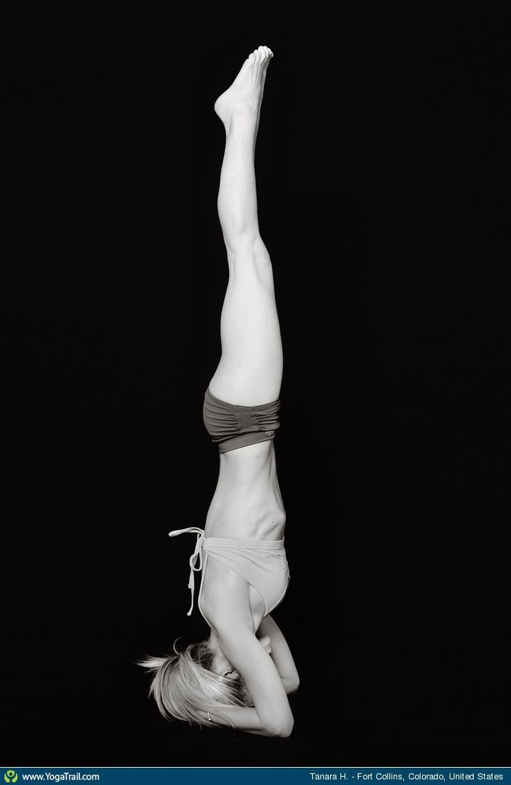 "Anywhere #Yoga Contest - win an iPhone 5: ""Headstand - by Tanara H."""
