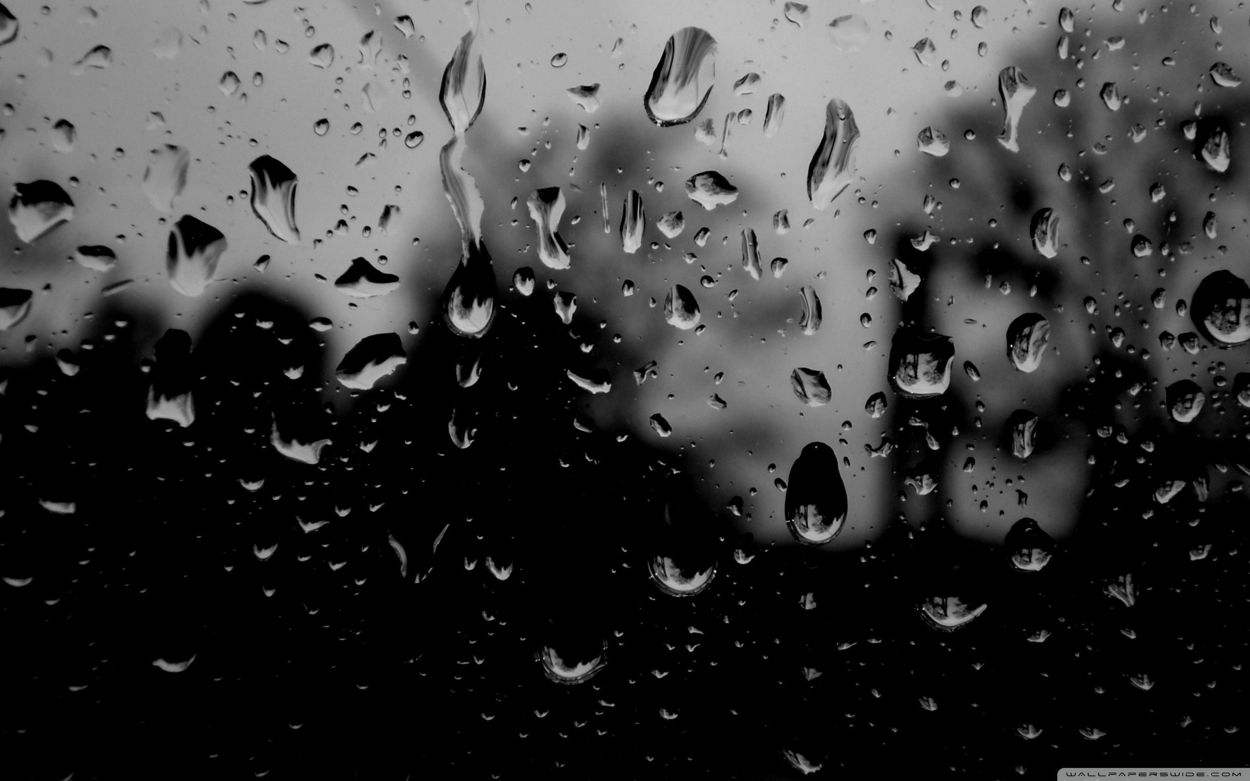 Nature Rain Full Screen Desktop Wallpaper Hd