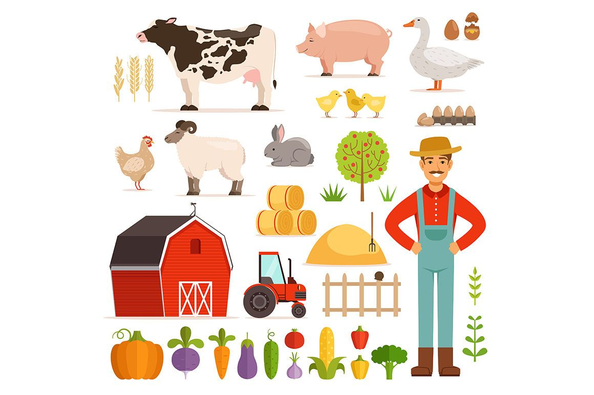 Different Farm Elements Vegetables Transport And