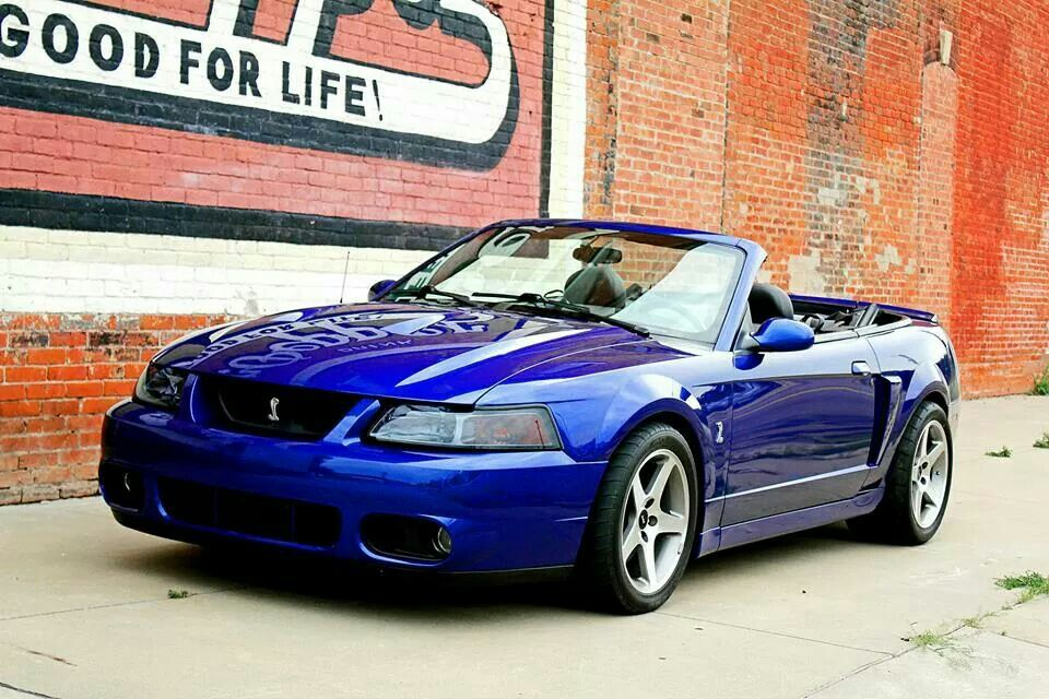 2003 Mustang Cobra Convertible Sonic Blue