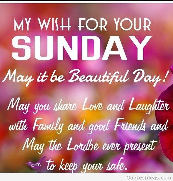 Good Morning My Wish For Your Sunday Good Morning Sunday Sunday Quotes Good  Morning Quotes Happy Sunday Sunday Quote Happy Sunday Quotes Good Morning  Sunday ...