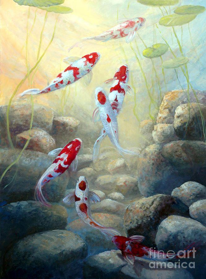 Let us be koi in 2019 art koi painting koi common carp for Koi prints canvas