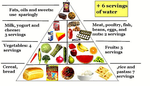 Nutritional Components of Foods