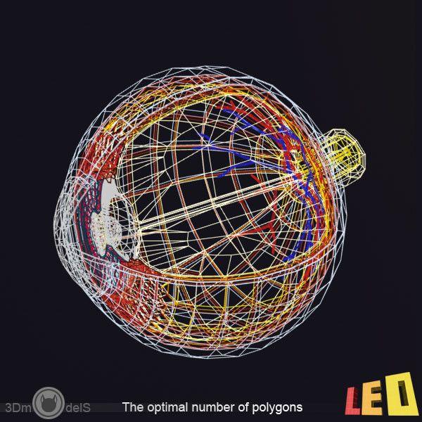 3d Anatomy Eye Model Eye Anatomy By Leo3dmodels Wizardz