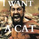 Gerard_wants_a_cat