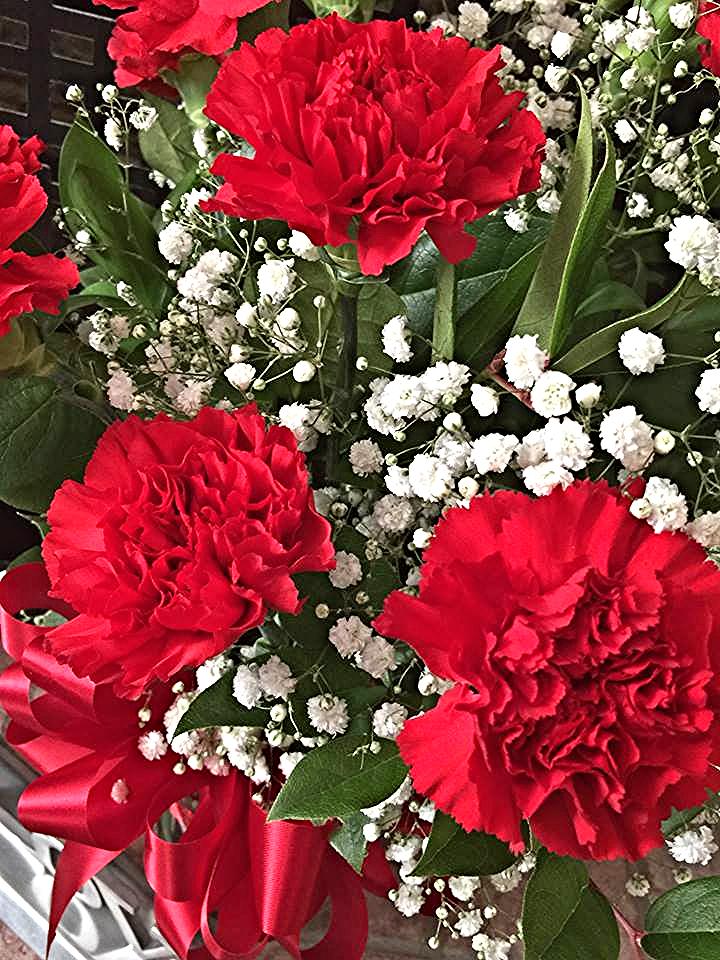 Bouji Red Carnations Arrangement By Bouji Boutique Carnation Flower Flower Arrangements Simple Beautiful Flowers