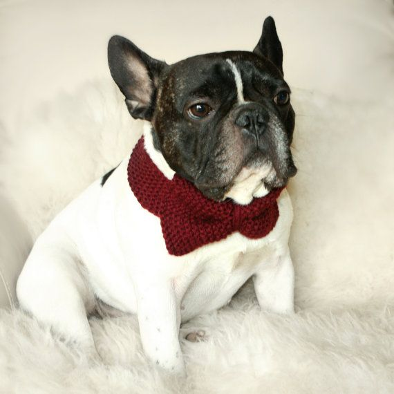 crochet dog bow tie... or turn it around and its a bow for a girl ...