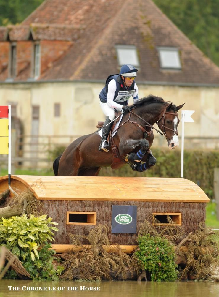 Phillip Dutton And Trading Aces At The 2014 Alltech Fei