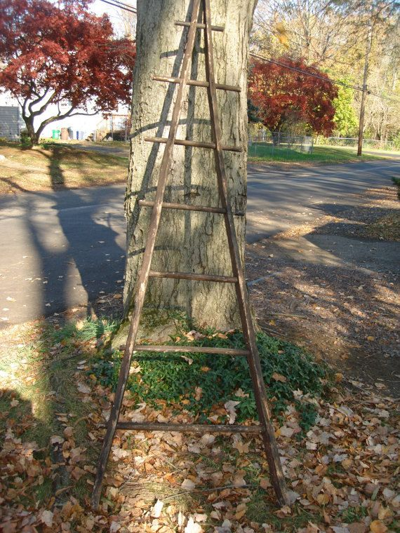 Rare French Antique Apple Picking Orchard Ladder Local Pick Up Only French Antiques Ladder Old Wooden Ladders