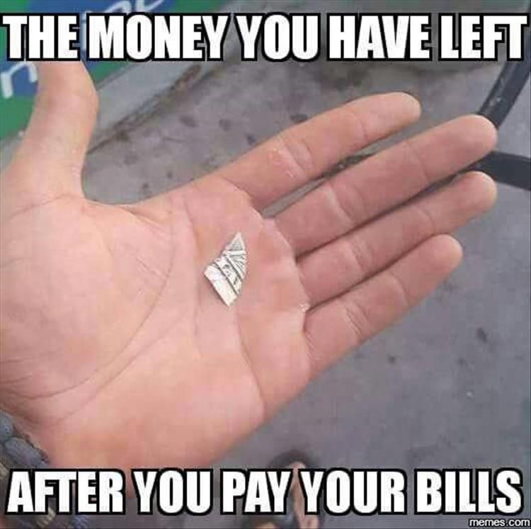 Funny Pictures Of The Day 36 Pics Funny Pictures Clean Funny Memes Money Humor