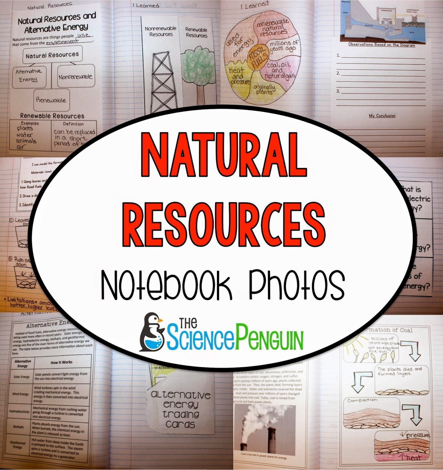 Worksheet Alternative Natural Resources 1000 images about teaching natural resources and alternative energy for 4th5th grade science staar on pinterest anchor charts sed
