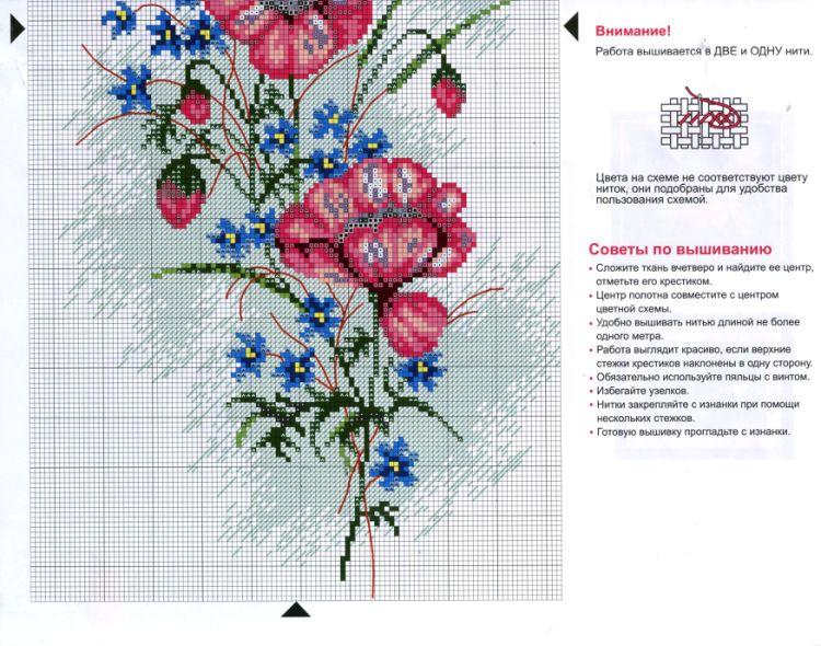 Gallery.ru / Фото #38 - Цветы 2 - logopedd
