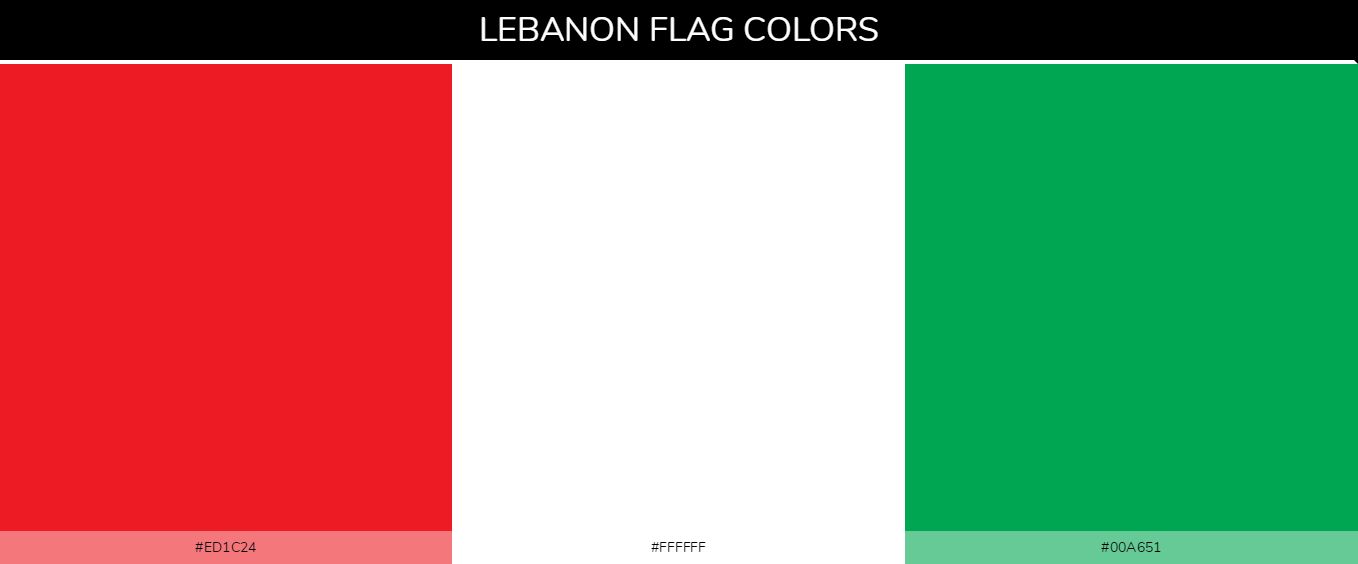 Color Palettes Of All Country Flags 127 In 2020 All Country Flags Flag Colors Country Flags