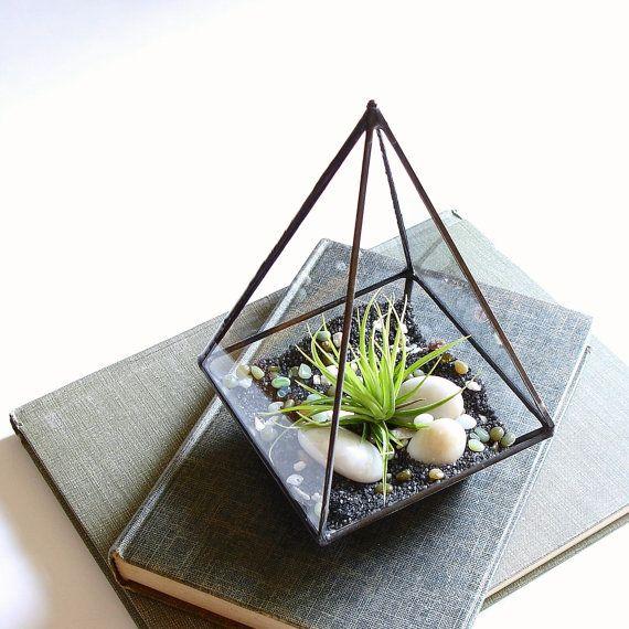 Terrarium Glass Pyramid Planter With Air Plant Diy Desk Accessory Terrariums Kits Pyramid Planter Air Plant Terrarium
