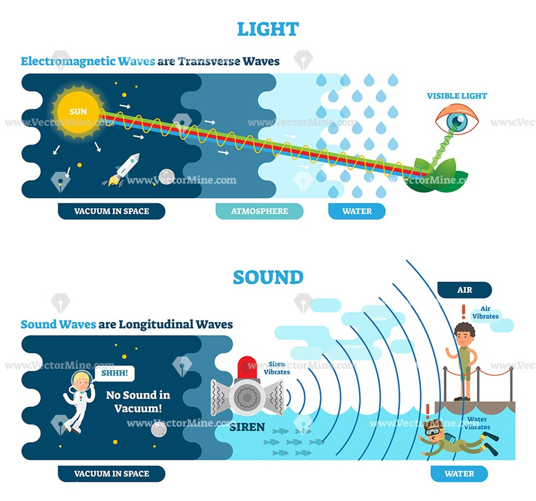 Science Physics Difference: Longitudinal And Transverse Wave Type, Vector Illustration