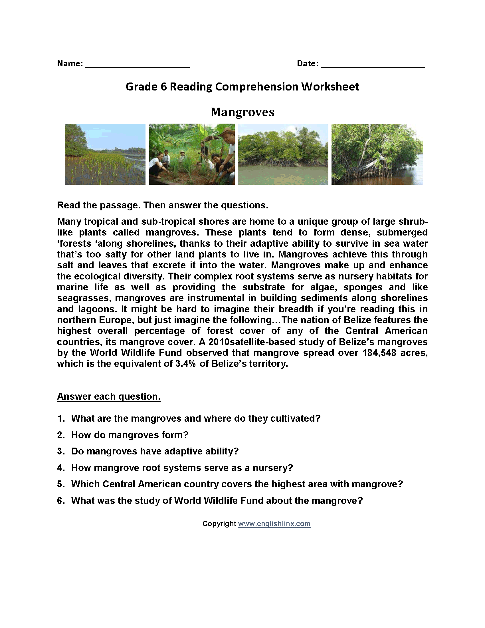 Mangroves\u003cbr\u003eSixth Grade Reading Worksheets   Reading comprehension [ 2200 x 1700 Pixel ]