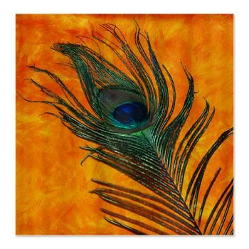 Peacock With Orange Shower Curtain. The Bright Orange Show Curtain Will  Look Amazing In Your Bathroom With The Peacock Bird Feather Across The  Front.