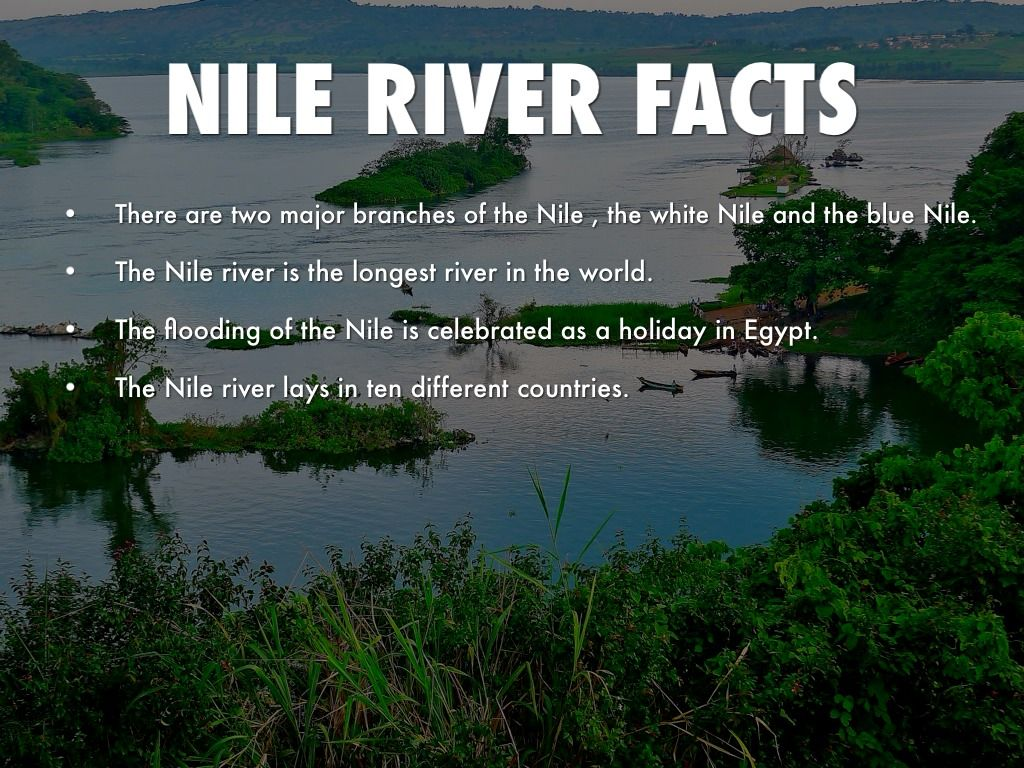 The Nile River Facts For Kids – Kids Matttroy