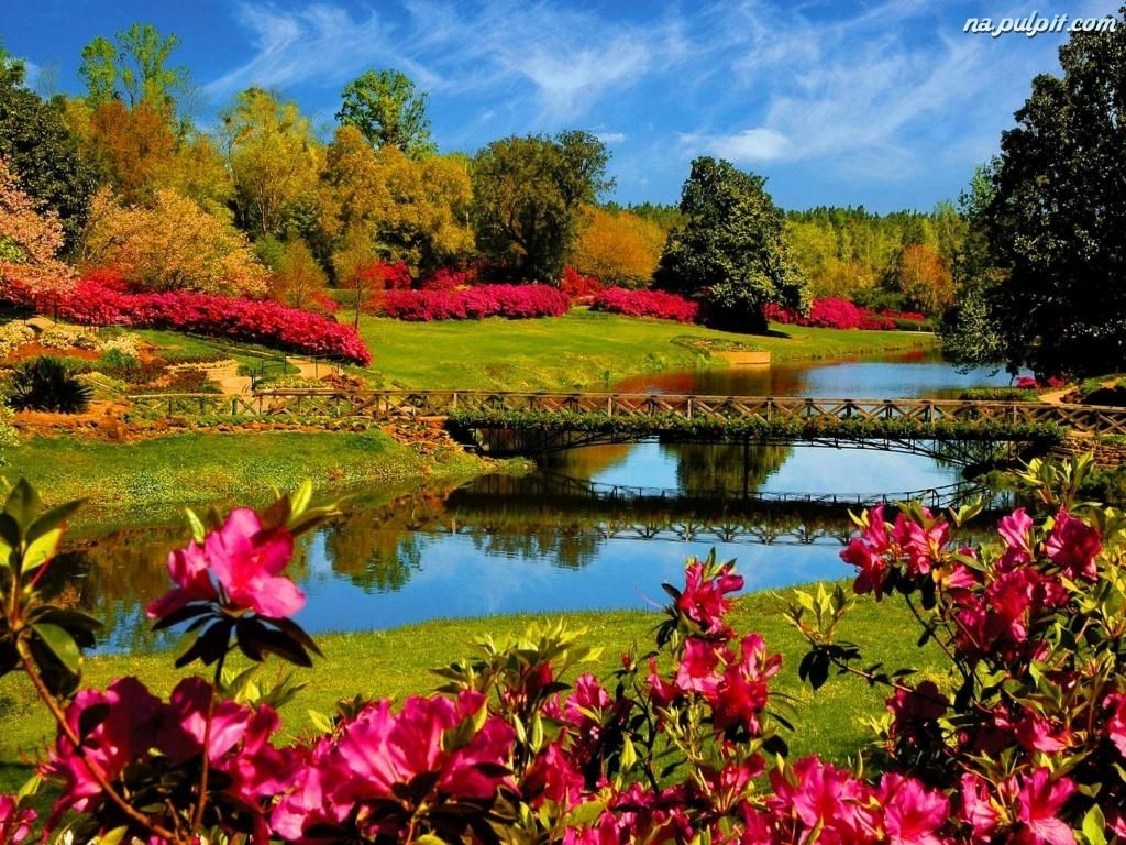 Tapety Na Pulpit Komputera Wiosna Szukaj W Google Lake Landscape Spring Wallpaper Spring Pictures