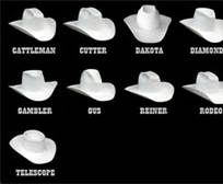 60091e9b06bf7 types of cowboy hats - Bing Images