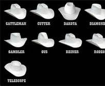 6eed18d14b7b5 types of cowboy hats - Bing Images