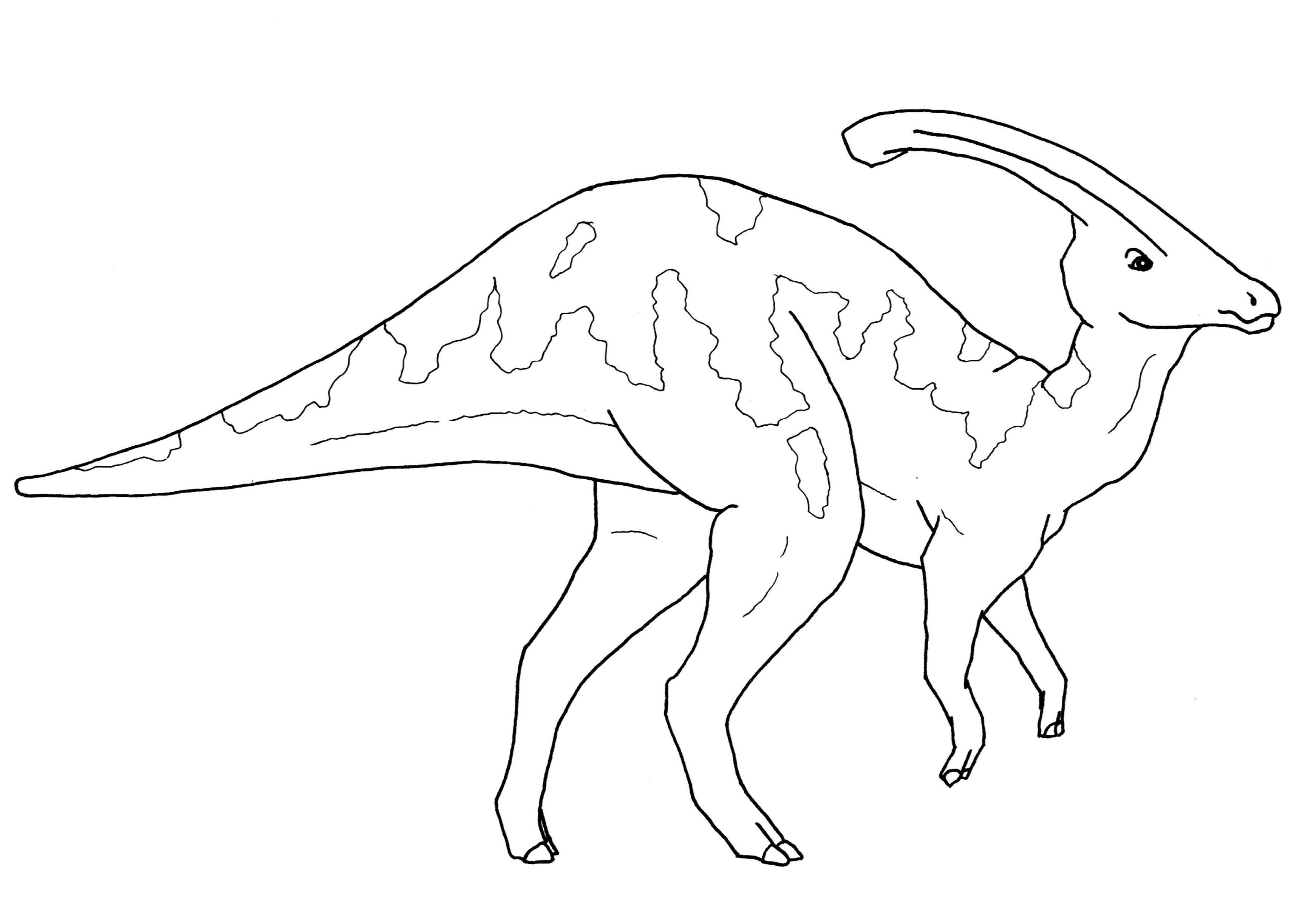Parasaurolophus Dinosaurs