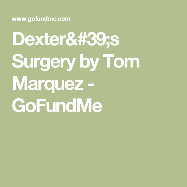 Dexter's Surgery by Tom Marquez - GoFundMe