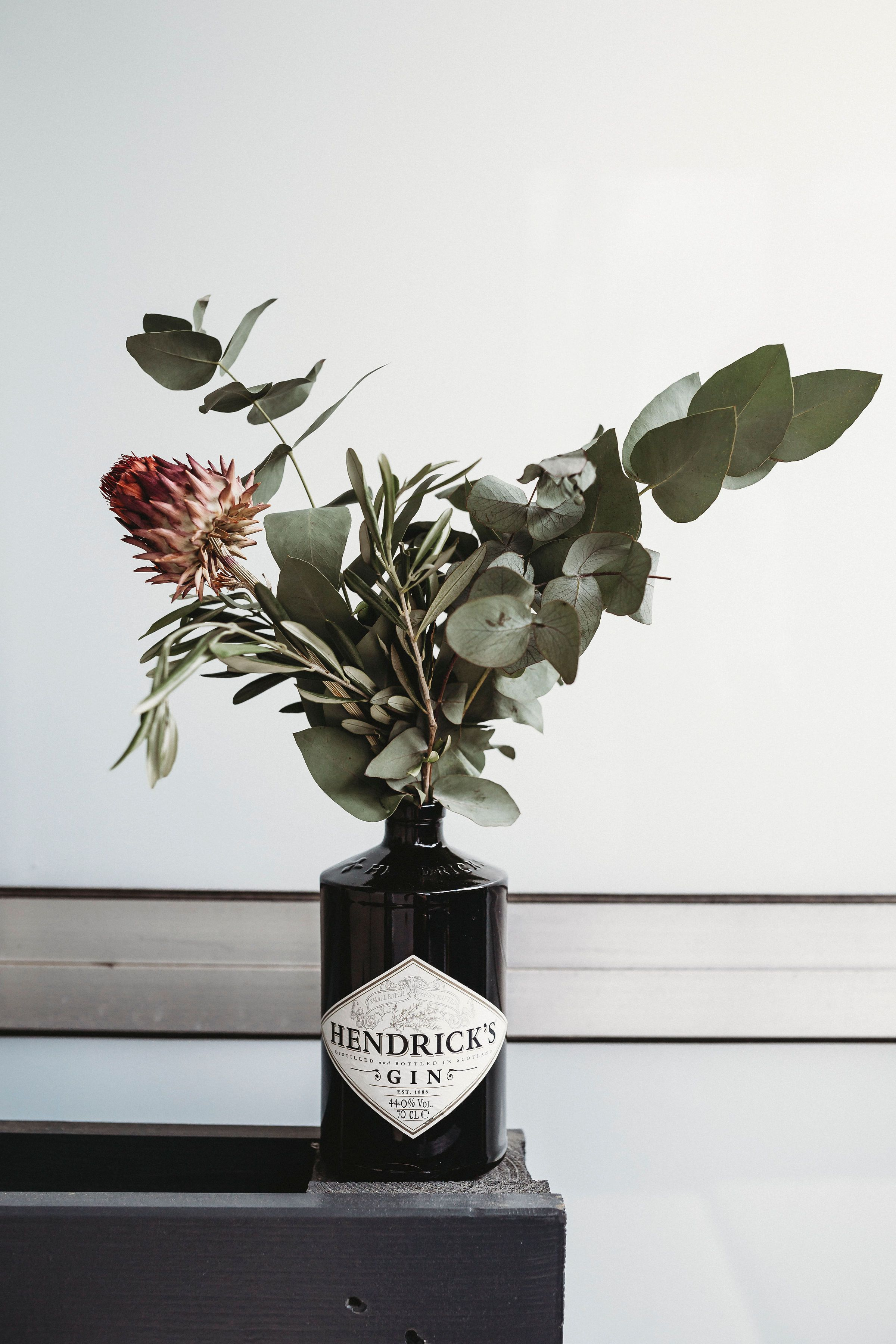Photo of Eukalyptus, Olive, Trockenblumen in Hendrick's Gin Flasche