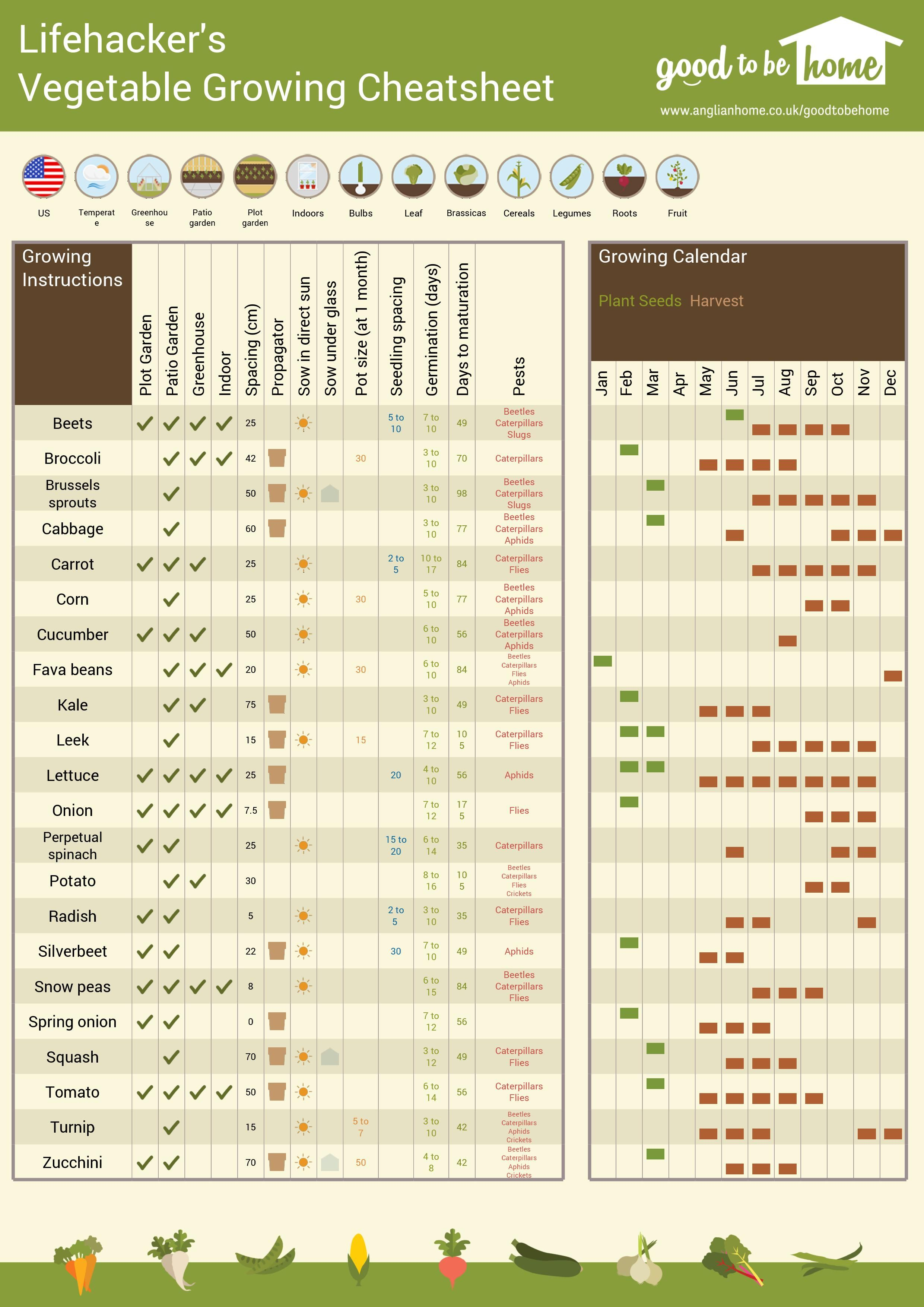 Vegetable growing charts and infographics are handy for both beginner seasoned gardeners but planting advice can also depend on where you live create  personalized gardening cheat sheet with this tool rh pinterest