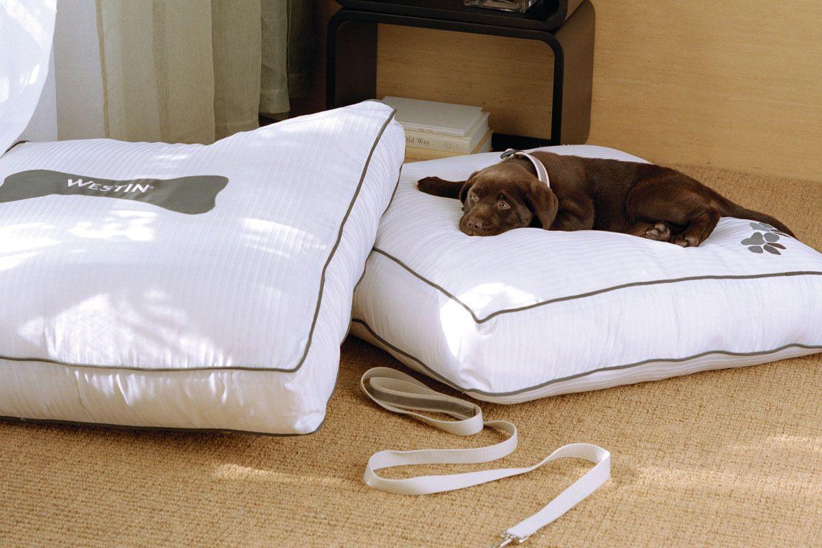 Westin Heavenly Dog Bed