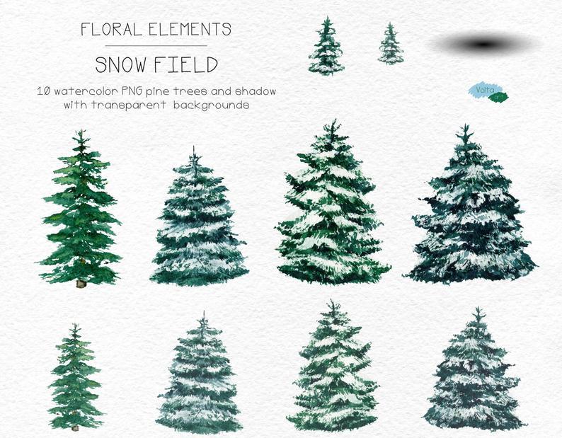 Watercolor Winter Pine Treeschristmas Clipart Conifers Etsy Clip Art Fall Watercolor Watercolor