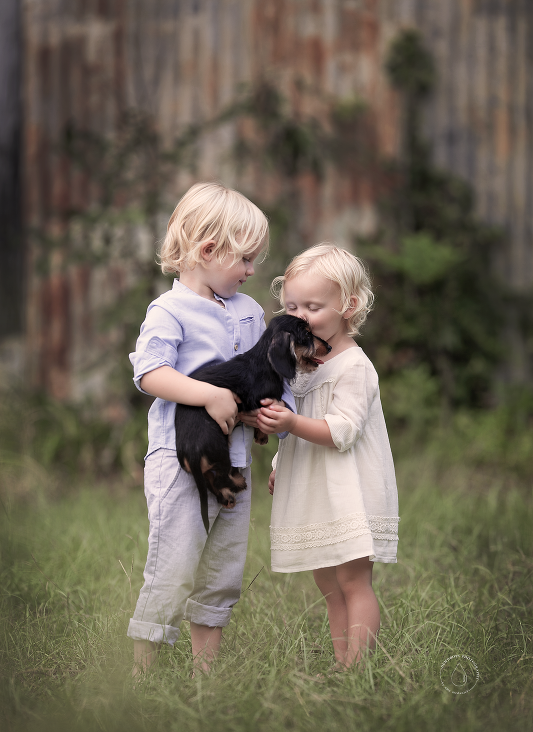 Babies Training your dog, Dogs and kids, Photographing