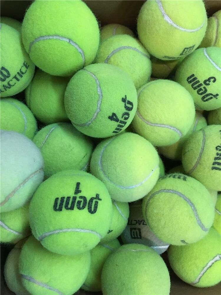75 Dead Used Tennis Balls Serving Dogs Toys Dog Play Fetch Games Bottom Walkers Penn Tennis Balls